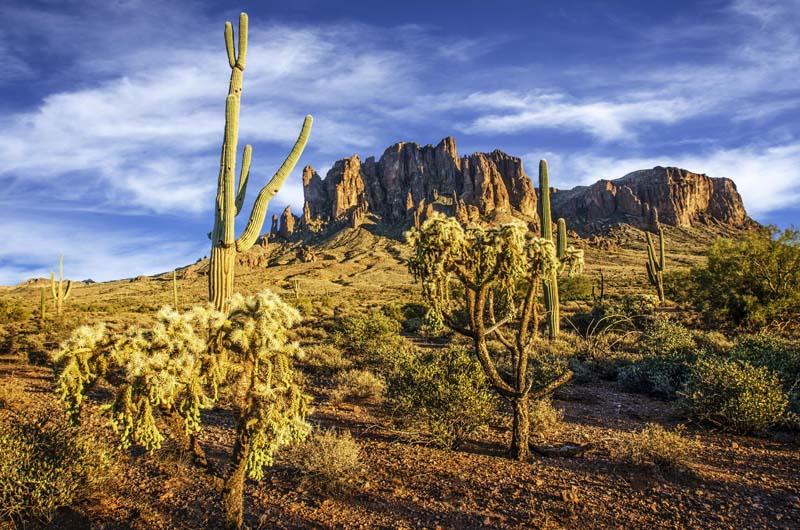 Lost Dutchman State Park Arizona